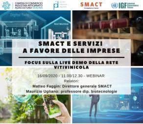 SMACT e servizi a favore delle imprese-focus sulla live demo della rete vitivinicola