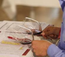 Verona winetop 2016
